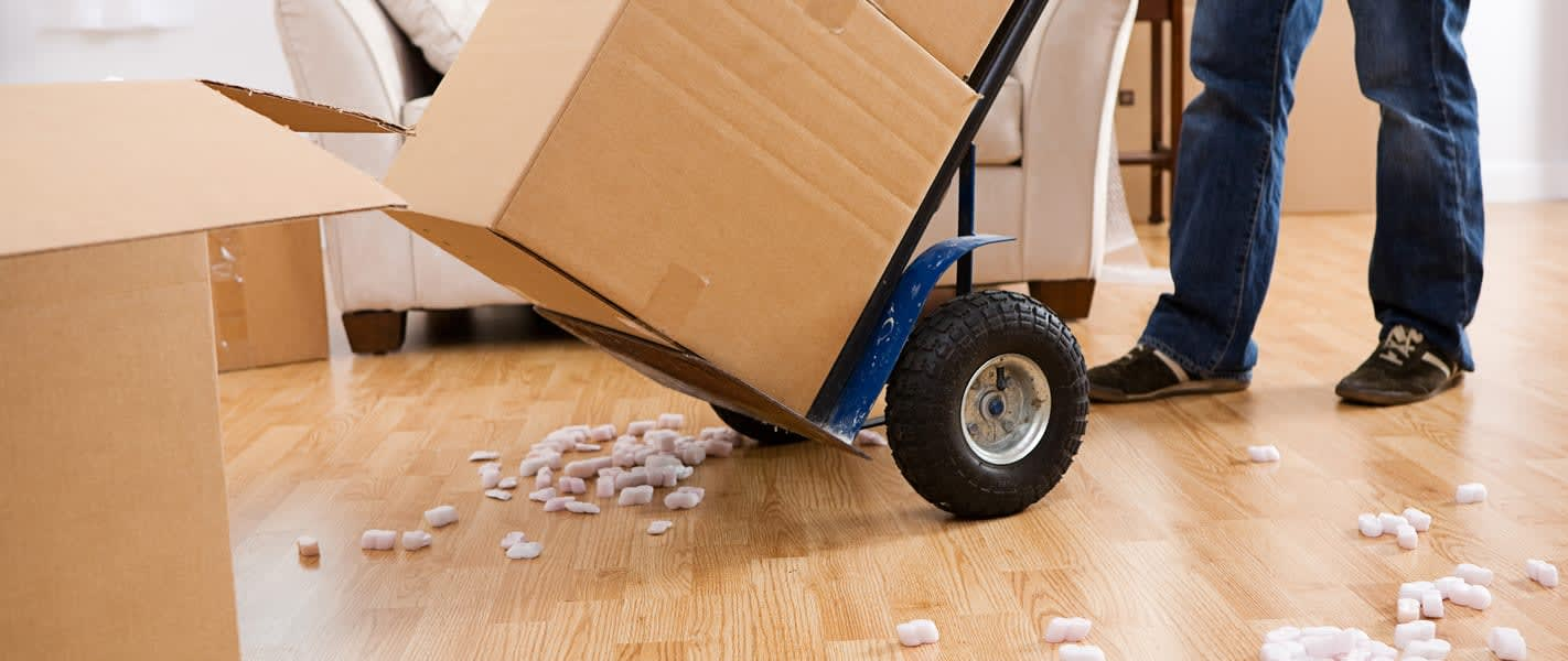 the best professional moving company
